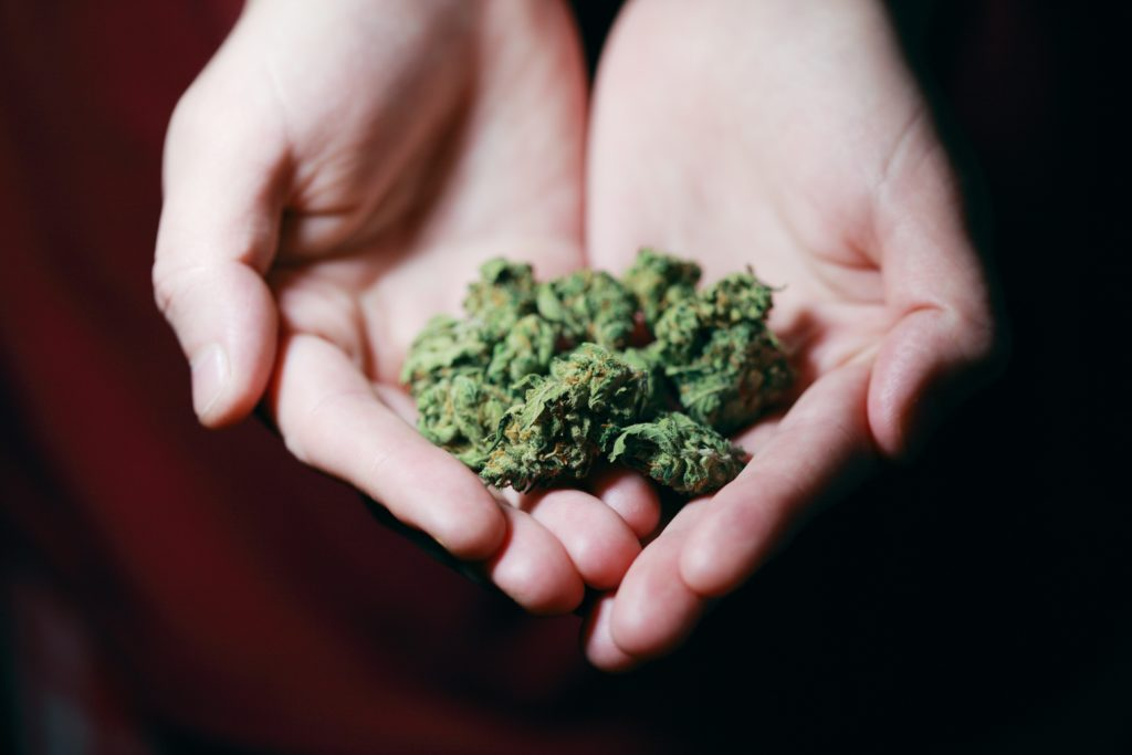 dispensary cannabis
